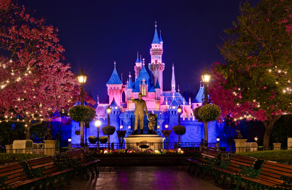 The Disneyland Castle